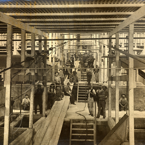 1888 Gravity Cellar